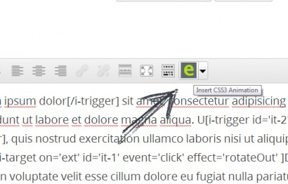 Icon on WP Editor