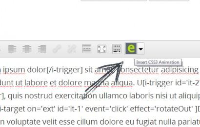 Icon on WP Editor